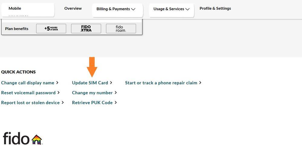 Update SIM.jpg