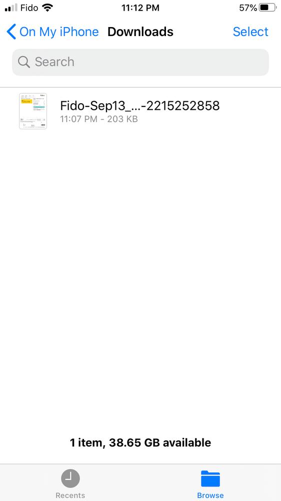 Files app - View PDF Bill