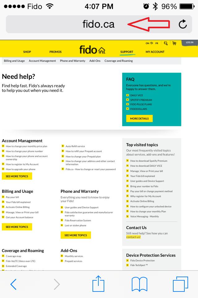 Web Page Search Bar