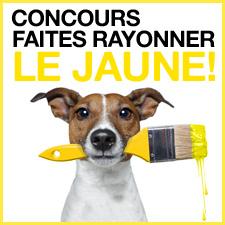 Spalshing-yellow-contest-V2-fr.jpg